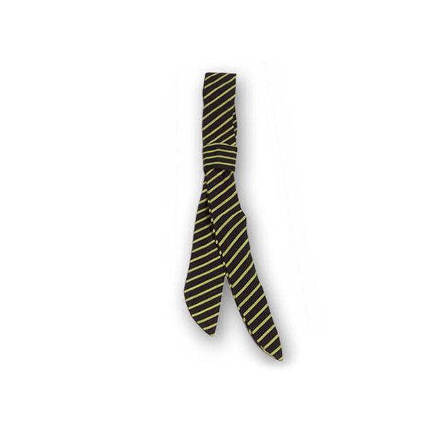 lazo-garys-325-raya-verde-pistacho